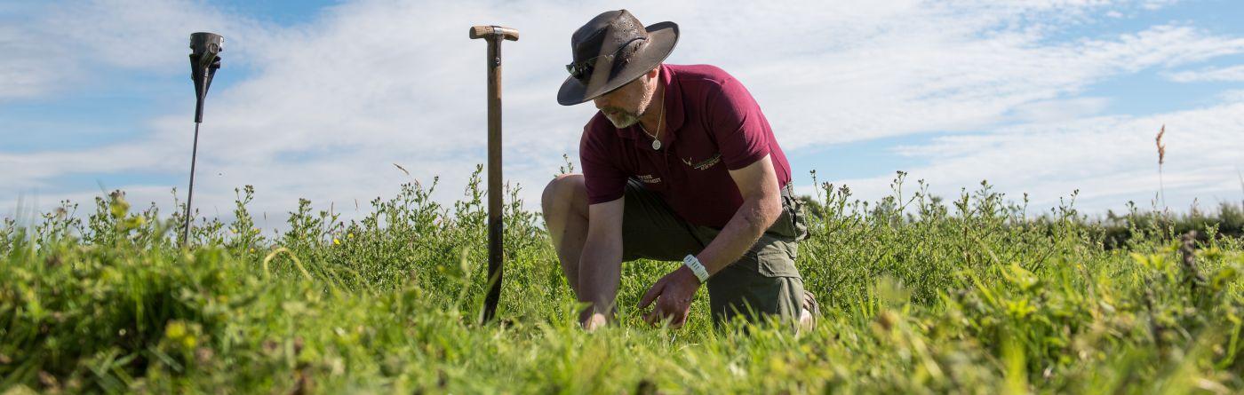 Lordington Park Agronomy