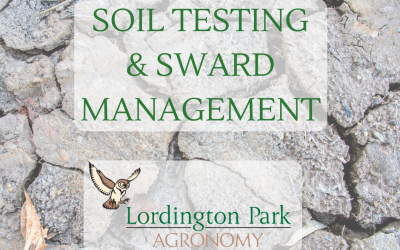 Introducing our DIY Soil Testing Service