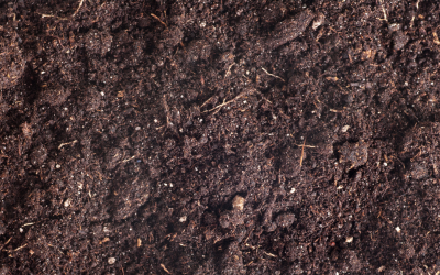 Can your soil have too much organic matter?